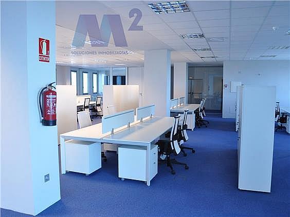 Oficina en alquiler en Las Tablas en Madrid - 294011747