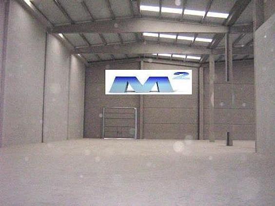 Nave industrial en alquiler en Montserrat en San Fernando de Henares - 125628992