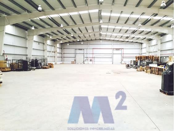 Nave industrial en alquiler en Guadalajara - 218914053