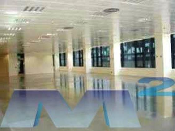 Oficina en alquiler en Hortaleza en Madrid - 141770403