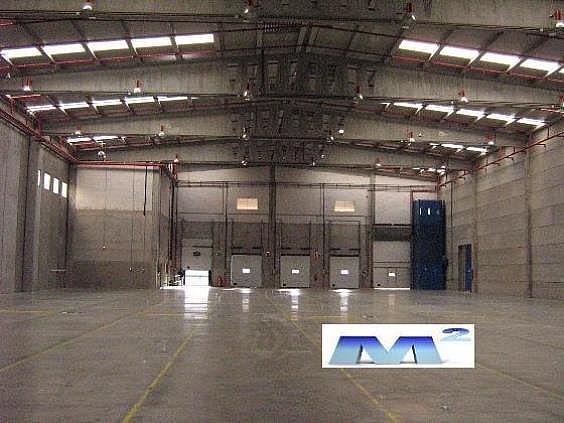 Nave industrial en alquiler en San Agustín de Guadalix - 206685106