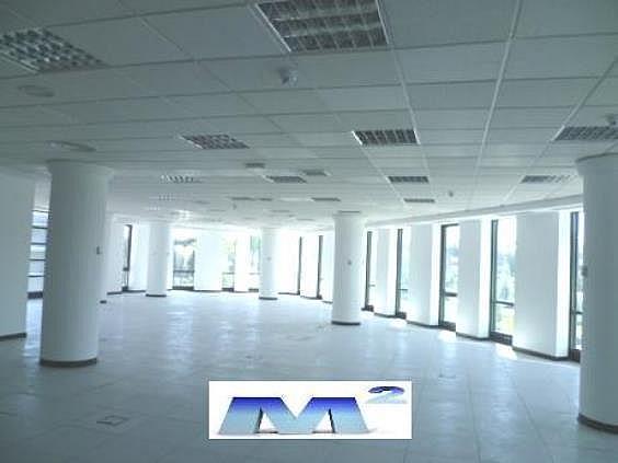 Oficina en alquiler en Moraleja, La - 214216913