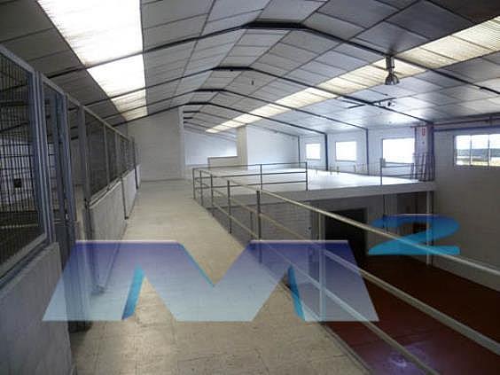 Nave industrial en alquiler en Barrio de la Estacion en Coslada - 214217300