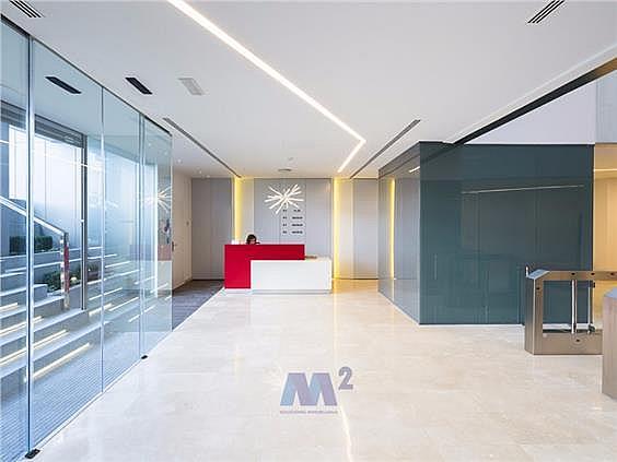 Oficina en alquiler en Moraleja, La - 352811302