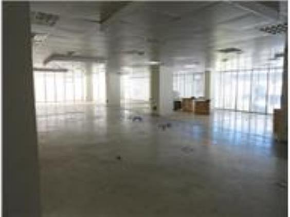 Oficina en alquiler en Castillejos en Madrid - 240093364