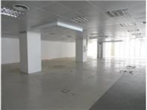 Oficina en alquiler en Castillejos en Madrid - 240093406