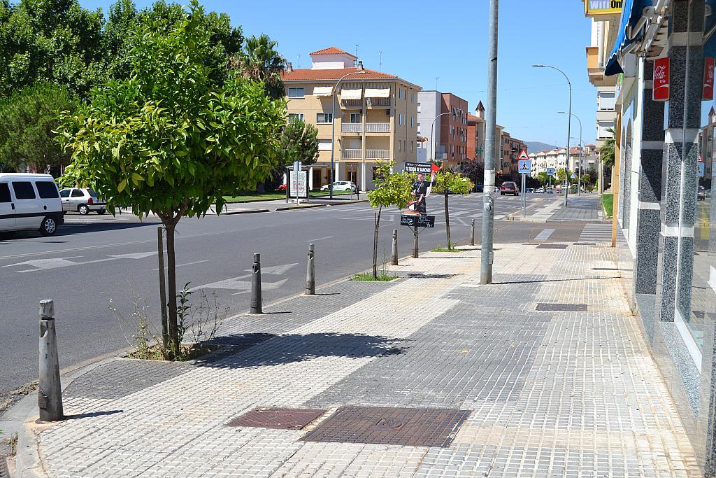 Vistas - Local comercial en alquiler en calle Lusitania, Mérida - 300290752