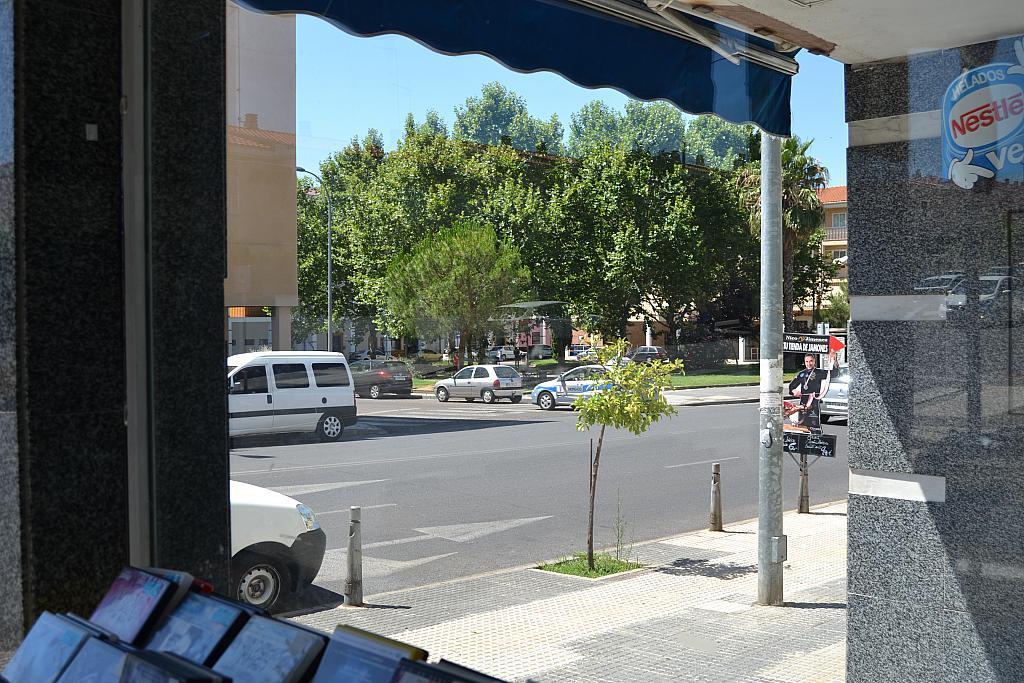 Detalles - Local comercial en alquiler en calle Lusitania, Mérida - 300290767
