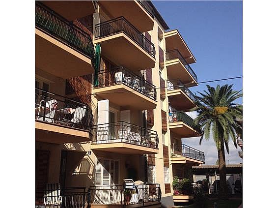 Fachada - Apartamento en venta en calle Isaac Albéniz, Pineda, La - 206897032