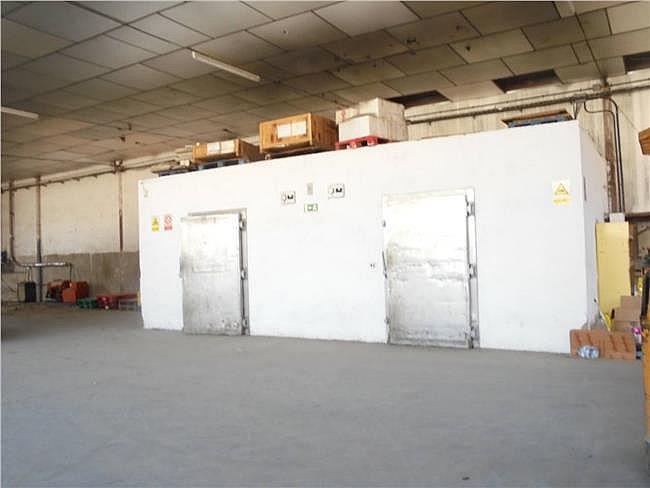 Nave industrial en alquiler en Manresa - 307255824