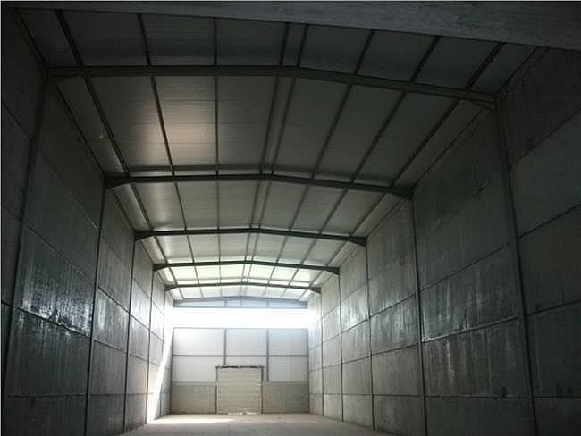 Nave industrial en alquiler en Santpedor - 315059519