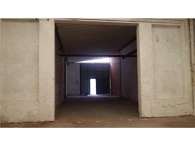 Nave industrial en alquiler en Sant Vicenç de Castellet - 315066368