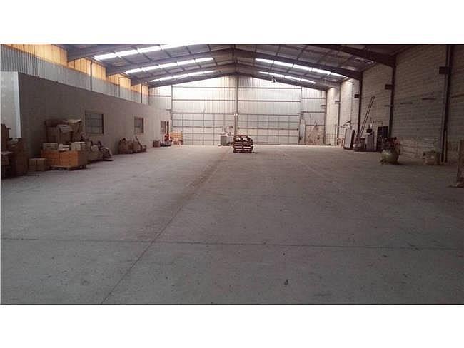 Nave industrial en alquiler en Sant Vicenç de Castellet - 315066452