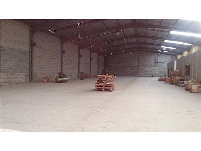 Nave industrial en alquiler en Sant Vicenç de Castellet - 315066458