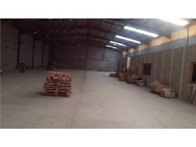 Nave industrial en alquiler en Sant Vicenç de Castellet - 315066461
