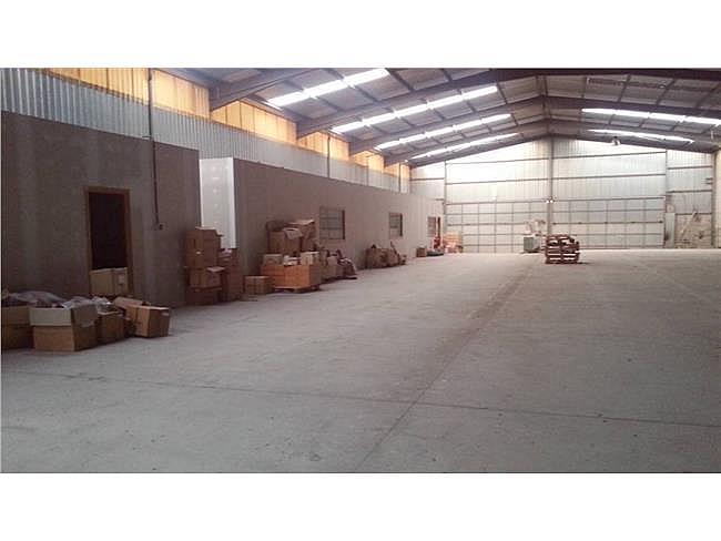 Nave industrial en alquiler en Sant Vicenç de Castellet - 315066473