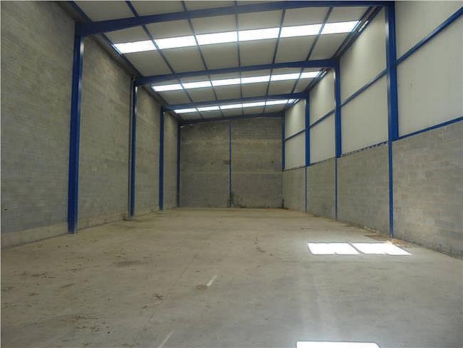 Nave industrial en alquiler en Sallent - 315069701