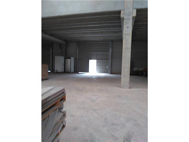 Nave industrial en alquiler en Callús - 315070451
