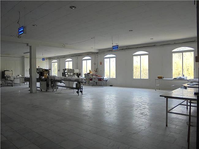 Nave industrial en alquiler en Sant Mateu de Bages - 304628303