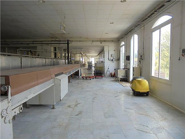 Nave industrial en alquiler en Sant Mateu de Bages - 304628312