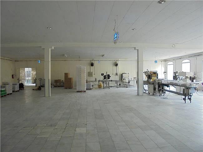 Nave industrial en alquiler en Sant Mateu de Bages - 327824341