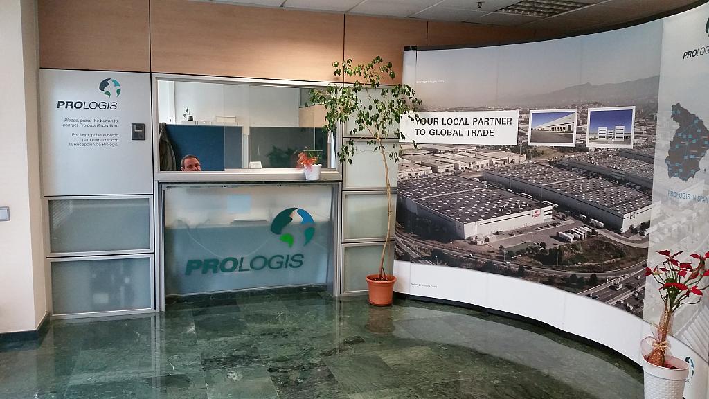Planta baja - Oficina en alquiler en Sant Boi de Llobregat - 244773073