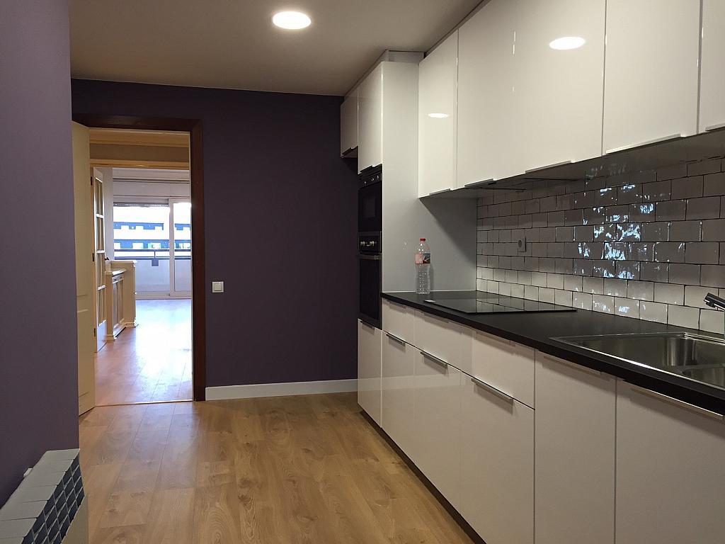 Cocina - Piso en alquiler en Sant Ramon-La Maternitat en Barcelona - 245396071