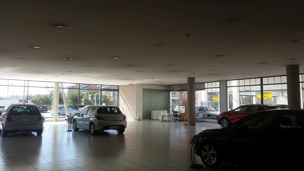 Local comercial en alquiler en La Torrassa en Hospitalet de Llobregat, L´ - 253640794