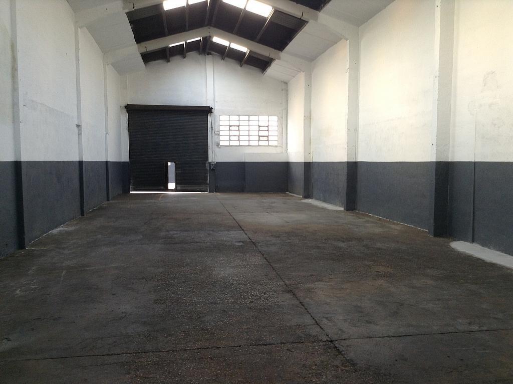 Planta baja - Nave en alquiler en Bellvitge en Hospitalet de Llobregat, L´ - 255718734