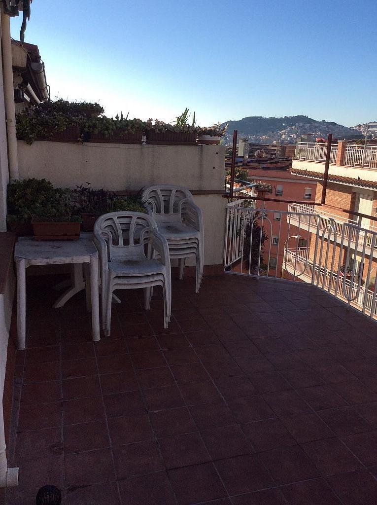 Terraza - Piso en venta en Les Roquetes-Canyelles en Barcelona - 362088019