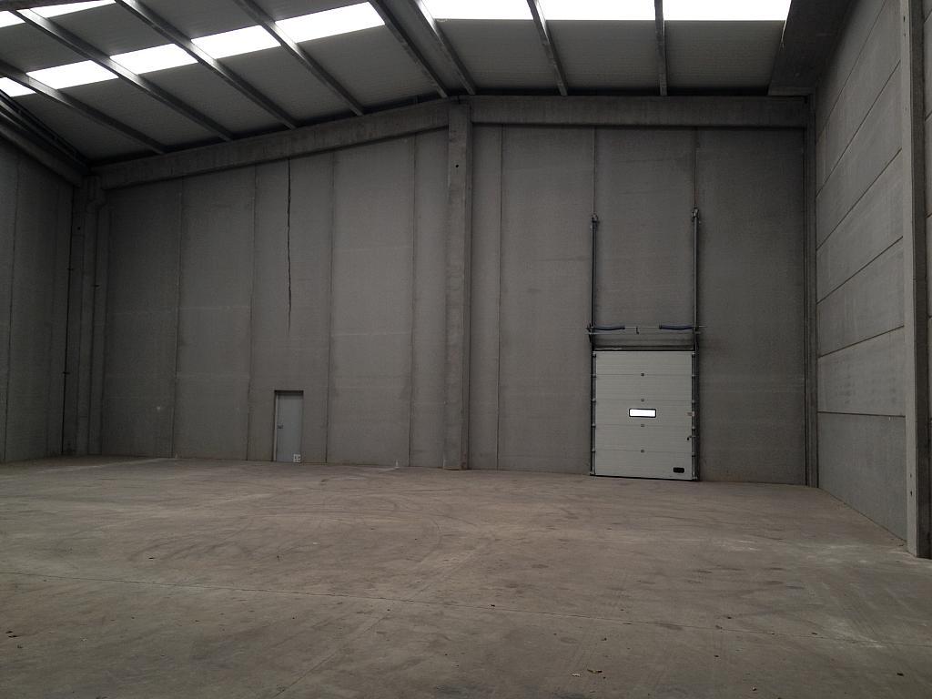 Planta baja - Nave industrial en alquiler en Sant Andreu de la Barca - 126577731