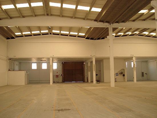 Planta baja - Nave industrial en alquiler en Sant Boi de Llobregat - 156110017
