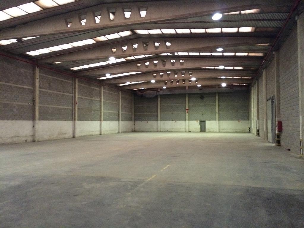 Planta baja - Nave industrial en alquiler en Prat de Llobregat, El - 165199891