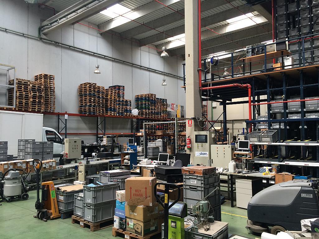 Planta baja - Nave industrial en alquiler en Sant Feliu de Llobregat - 203498940