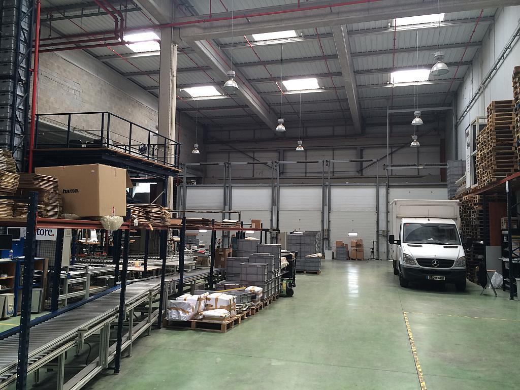 Planta baja - Nave industrial en alquiler en Sant Feliu de Llobregat - 203498958
