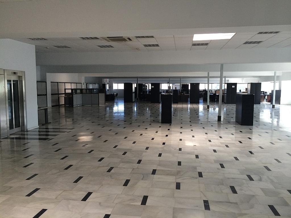 Oficina - Nave industrial en alquiler en Sant Feliu de Llobregat - 203498999