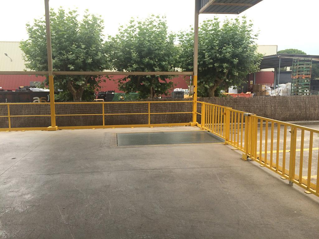 Zonas comunes - Nave industrial en alquiler en Montornès del Vallès - 203975218