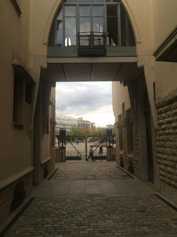 Patio trasero - Oficina en alquiler en Centre en Girona - 213474374