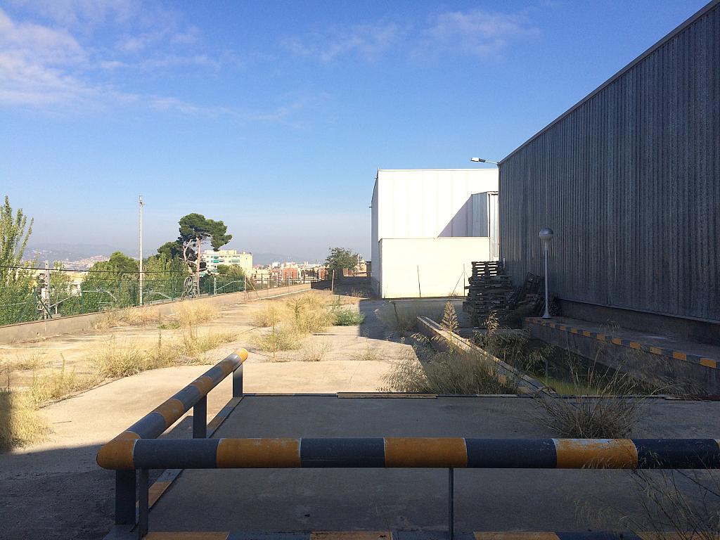 Patio trasero - Nave en alquiler en Sant Joan Despí - 214235480