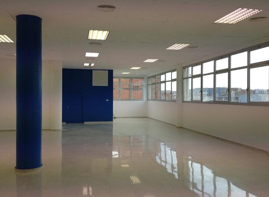 Detalles - Nave en alquiler en Bellvitge en Hospitalet de Llobregat, L´ - 216221239