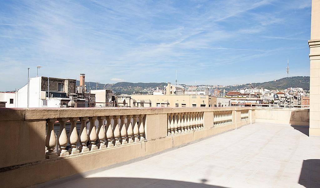 Vistas - Oficina en alquiler en Eixample dreta en Barcelona - 219569562