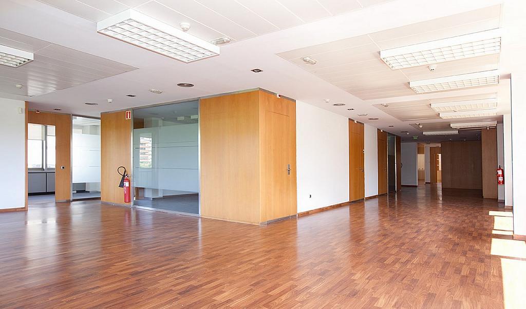 Oficina - Oficina en alquiler en Pedralbes en Barcelona - 228868983