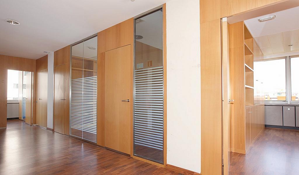 Oficina - Oficina en alquiler en Pedralbes en Barcelona - 228868986