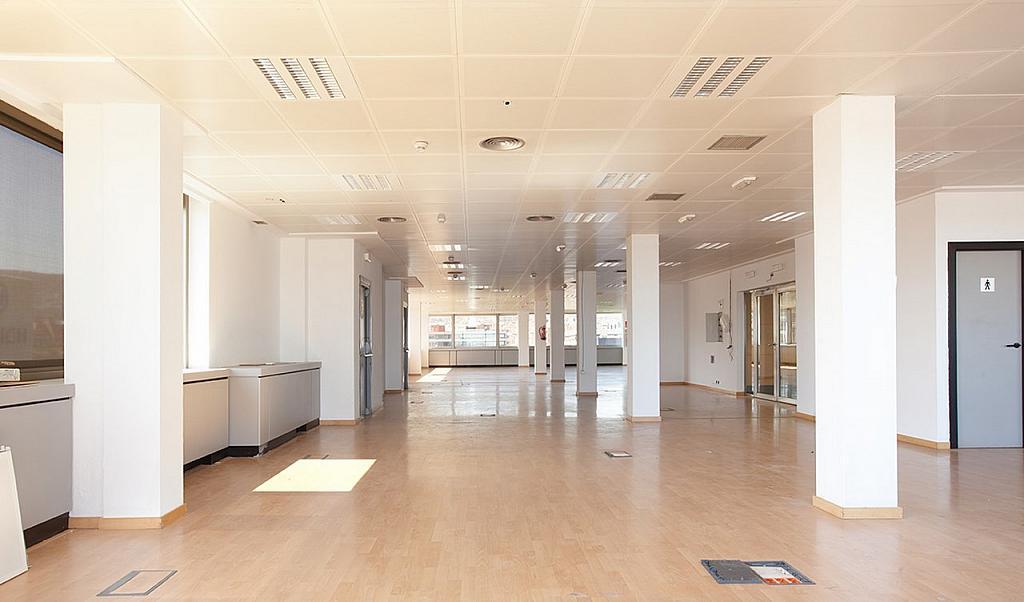Oficina - Oficina en alquiler en Pedralbes en Barcelona - 228868996