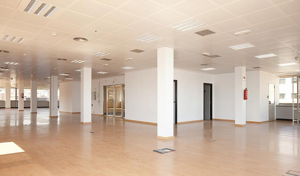 Oficina - Oficina en alquiler en Pedralbes en Barcelona - 228869007