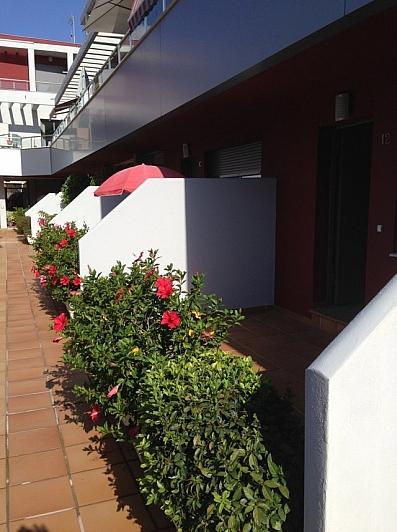 Apartamento en alquiler en calle La Cordera, Torremolinos - 377217131