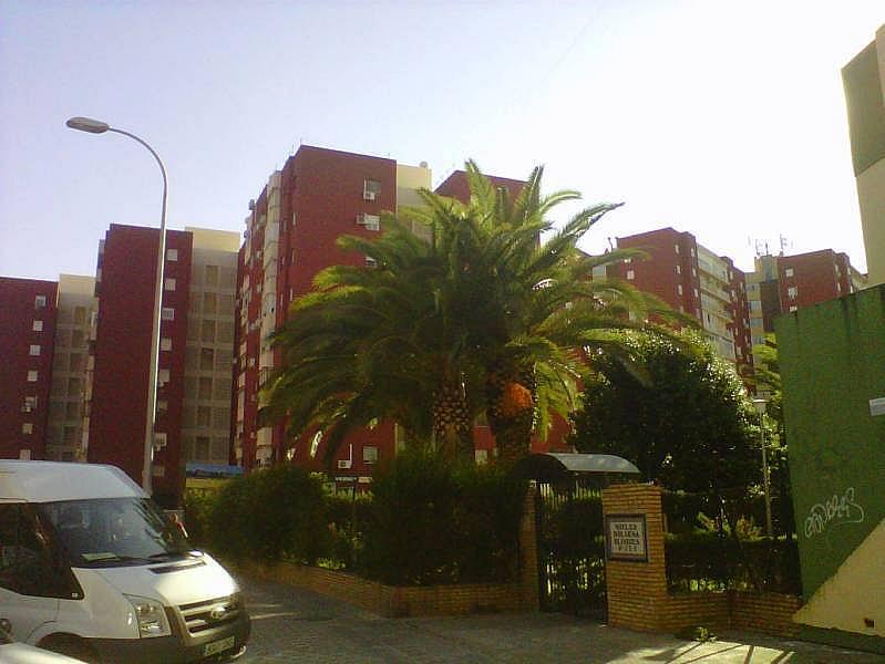 Foto - Piso en alquiler en Montequinto en Dos Hermanas - 278718066