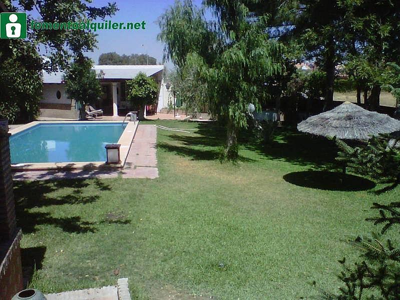 Foto - Chalet en alquiler en Montequinto en Dos Hermanas - 296345231