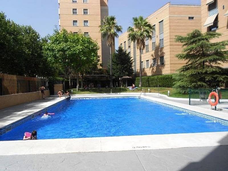 Foto - Piso en alquiler en Macarena en Sevilla - 299421273