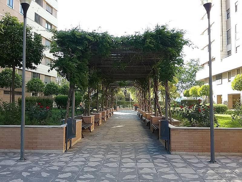 Foto - Piso en alquiler en Macarena en Sevilla - 299421336